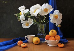 June Has Its Motives (Esther Spektor - Thanks for 12+millions views..) Tags: stilllife naturemorte bodegon naturezamorta silleben naturamorta composition creativephotography summer tabletop bouquet flowers poppy food fruit apple apricot vase scarf bowl cup water stem glass ceramics wooden ambientlight white yellow green orange cobalt brown black estherspektor canon coth5