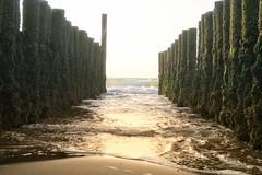 Buhne im Meer (Thomas Diekel) Tags: buhne wasser meer wellen strand zeeland domburg brandung