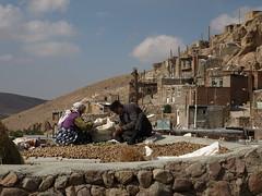 PA126659 (bartlebooth) Tags: iran kandovan osku eastazerbaijanprovince fairychimney troglodytevillage persian iranian architecture olympus e510 evolt silkroad middleeast mountains village walnuts