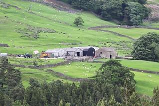 Farming in Nidderdale