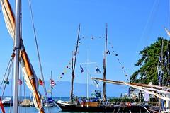 La Vaudoise pavoisée pour la fête (Diegojack) Tags: morges vaud suisse d7200 nikon nikonpassion léman port bateaux voiliers voileslatines barque vaudoise groupenuagesetciel