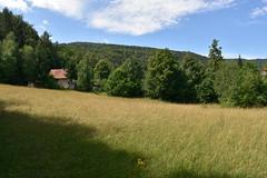 DSC_1860 (gregorv) Tags: slovenia slovenija kum planine mountains mountain nature narava