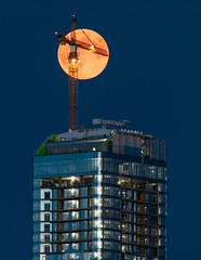 Strawberry Moon - Ice District - crane (WherezJeff) Tags: 20102019 alberta edm edmonton jwmarriott summer yeg cityscape construction crane downtown skyscraper tower canada pcl d850