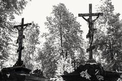 2018-07-15_03-28-22 (denn22) Tags: tobolsk denn22 2018 ilce7rm2 a7rm2 mog 35 bw russland russia sibirien