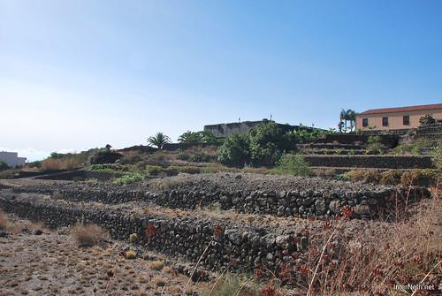 Піраміди в Гуїмар, Тенеріфе, Канари  InterNetri  036