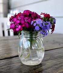 Cute Bouquet (pjpink) Tags: flowers vase bouquet colorful posies blacksheep restaurant beaufort northcarolina nc carolina crystalcoast smalltown may 2018 spring pjpink 2catswithcameras