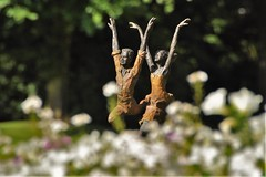 Dancing in the garden (wilma HW61) Tags: statue beelden beeldentuin tuin garden garten images kunst art arte sculpturegarden doff dull depthoffield mariënheem beeldentuinmariënheem overijssel nederland niederlande netherlands nikond90 holland holanda paysbas paesibassi paísesbajos europa europe outdoor zomer summer été wilmahw61 wilmawesterhoud