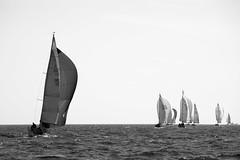 Hangon regatta (Antti Tassberg) Tags: bw purjehdus purjevene hanko vene jolie suomi regatta blackandwhite boat finland monochrome sailing sailingboat scandinavia yacht uusimaa fi