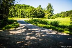 Montesquieu-12_GF (zango-photos) Tags: lotetgaronne randonnée montesquieu ballade paysage campagne 47 été nature vignes
