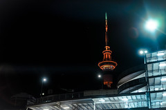 DSC06749 (SunThroughEyelids) Tags: night blue auckland newz newzealand sony sky stars art ambient adventure awesome amazing a7ii nature landscape dark light photography skyline