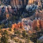 Bryce Canyon - Towering Countryside thumbnail