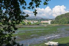 Desembocadura Río Alvedosa-_DSC2908 (peruchojr) Tags: redondela ríoalvedosa ensenadadesansimón galicia nwn