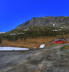 Red cabin (Roman_P2013) Tags: mountain cabin best shot view landscape red hill road norway norge sky clouds tress grass wide
