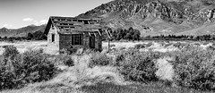 The view was not enough to stay....6O3A7440CR2A (dklaughman) Tags: abandoned home bw blackwhite arco idaho