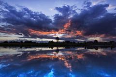 Blue hour in my hometown (Robyn Hooz) Tags: bluehour orablu padova nuvole cielo acqua riflesso reflection dream sigh casa home sospiro chioscomekong