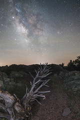 Milky Way over Hughes Mountain (tylerjacobs) Tags: sigma 16mm f14 sony a6000 long exposure longexposure photography milky way stars astrophotography astronomy nature camping hiking nightsky night summer