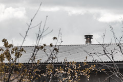 Refugio modular en la dehesa (ruheca | Fotografia de Arquitectura y mucho +) Tags: valladolid españa esp villabáñez 2018 arquitectura española castilla y leon residencial villanueva de duero vivienda unifamiliar architecture photography contexto entrearquitectura fotografia house implantacion javier arias moderna spain susana garrido wwwentrearquitecturacom cielo hierba edificio modular prefabricada