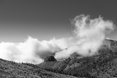 Clouds moving in (Rico the noob) Tags: 2018 rock d850 landscape nature outdoor 2470mmf28 clouds trees published dof tree monochrome forest sky rocks bw 2470mm teneriffa blackandwhite tenerife