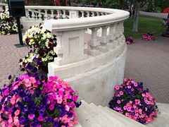 Spruce Meadows #Albertabound (Mr. Happy Face - Peace :)) Tags: july1st art2018 scenery park yyc sprucemeadows calgary alberta summer canadaday grounds history buttergarden