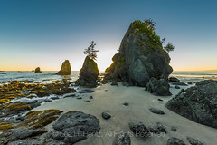 Sunset at Point of Arches in Olympic National Park (Lee Rentz) Tags: eocene olympicnationalpark olympicpeninsula pacificnorthwest pacificocean pointofarches shishibeach washington washingtonstate america ancient backpacking beach breccia coast coastal coastline color conglomerate eroded hiking landscape light lowtide marine nationalpark nature northamerica northwest ocean pounded reflected reflecting reflections remote rocks sea seastacks seashore settingsun shore silhouettes stacks sunset tidal tide usa waveaction waves wild