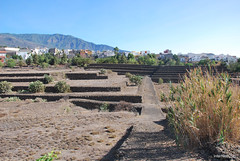 Піраміди в Гуїмар, Тенеріфе, Канари  InterNetri  015