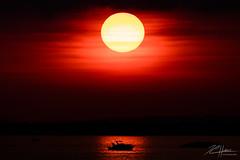 Lottery winner sunset (LASCAR35) Tags: 100400isl ilestbernard refugemarguerittedyouville 80d canon dslr boat sunset red bestshotoftheday