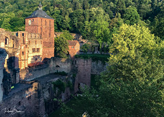 Heidelberger Schloss (since 1960) Tags: europa europe deutschland germany badenwürttemberg heidelberg historic stadt city himmel sky wolken clouds burg schlos castle ruin