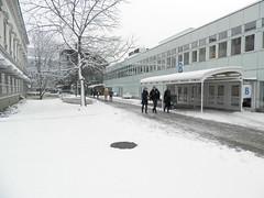 Gången mellan Bloms hus och södra husen med nysnö (Linzen004) Tags: stockholmsuniversitet vinter snö