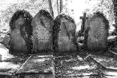 We Stand United (stopdead2012) Tags: highgate cemetery east london graves tombstones monochrome