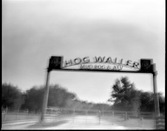 You can waller with hogs here. (FreezerOfPhotons) Tags: sixty7woody 75mmf45rodenstockysaron multipleexposure ultrafineextreme100 xtol