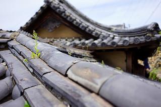 Ogijima rooftop