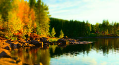 Magic, isn't it (evakongshavn) Tags: landscape landschaft paysage lake water reflections reflection colors colours colorful colourful forest nikon nikond7200 photography photooftheday photo light