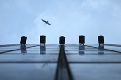 Upwind (Sami Mouritane) Tags: rijeka seaside perspective seagull lookup facade