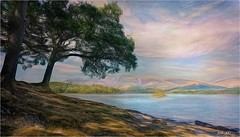 Down by the banks of Derwentwater (Jan 130) Tags: derwentwater lakedistrictnationalpark cumbria englanduk jan130 digitalpainting topazstudio textured song joanbaez beautiful ngc npc