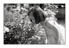 Le parfum des fleurs (stéphanemarco) Tags: enfant leica r6 90mm elmarit film agfa apx100 id11