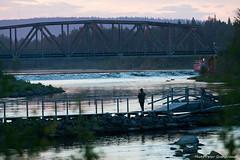 Fishing! (petergranström) Tags: fishing river slagnäs arvidsjaur älven evening bridge fiske älv järnvägsbro railwaybridge skellefteälven