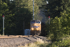 Out of the shadows (Tom Trent) Tags: pleasanthill oregon unitedstates us ac4400cw c44ac ge diesel freight rail siding dougren switch milepost track signal trees up unionpacific eugene