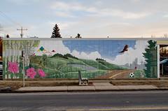 Path Mural (Bracus Triticum) Tags: path mural calgary カルガリー アルバータ州 alberta canada カナダ 12月 december winter 2017 平成29年 じゅうにがつ 十二月 jūnigatsu 師走 shiwasu priestsrun