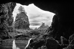 Sheltered view (D. Inscho) Tags: olympiccoast pointofthearches pacificnorthwest washington seastack arch reflection coast
