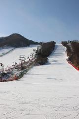 Jisan Ski Resort (dbind747438) Tags: jisan ski resort seoul south korea asia country outdoors snow hills mountain slopes perspective