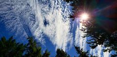Shooting the sun (rve13) Tags: sun galaxys9 cloudsstormssunsetssunrises lookup flair