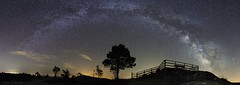 Noches en Guitiriz (Noa Táboas) Tags: milky milkyway via vialactea noche night nikon arbol tree guitiriz montaña stars estrellas photography astrophotograpy astrofotografia wood grass lugo