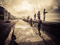 Havanna (gies777) Tags: kuba cuba havanna havana habana lahabana malecon olympus omd em5 mft angler angeln fishing