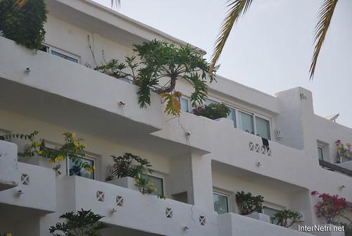 Готель Хардін Тропікаль, Тенеріфе, Канари  InterNetri  422