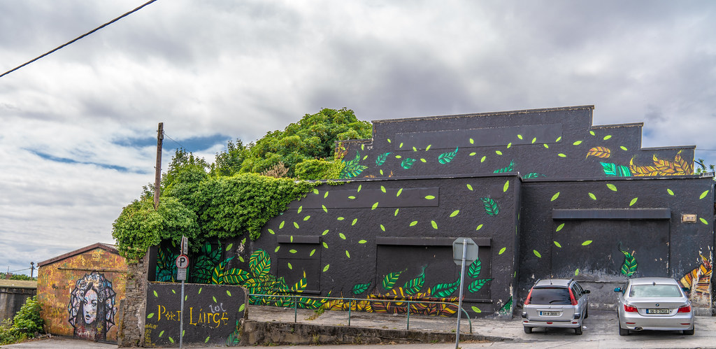 EXAMPLES OF STREET ART [URBAN CULTURE IN WATERFORD CITY]-142267