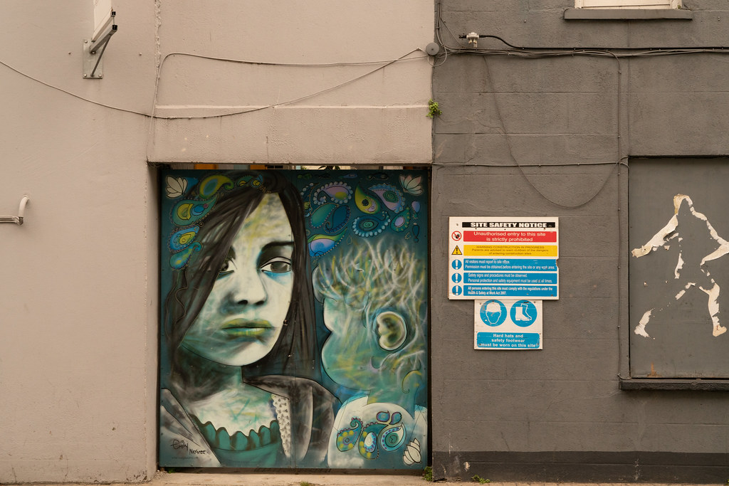 EXAMPLES OF STREET ART [URBAN CULTURE IN WATERFORD CITY]-142336