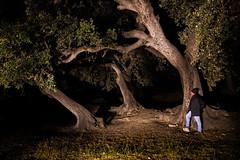 IMG_4012 Las Fuentes del Marqués - Caravaca de la Cruz - Murcia - Spain (_Diego Soto) Tags: caravaca murcia spain night nocturna nightphotography noche