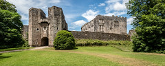 Berry Pomeroy Castle panorama (Keith in Exeter) Tags: berrypomeroy castle totnes devon building architecture ruins gatehouse curtainwall mansion tudor elizabethan grass lawn bush tree landscape england english heritage stonework sky tower