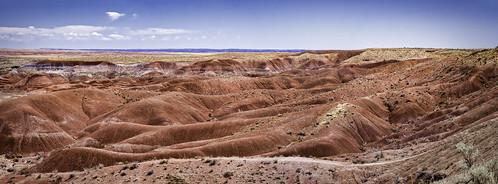 Painted Desert Pan 2