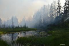 Smoke On The Water (Bo Ragnarsson) Tags: river älv smoke landscape landskap forest forestfire boragnarsson
